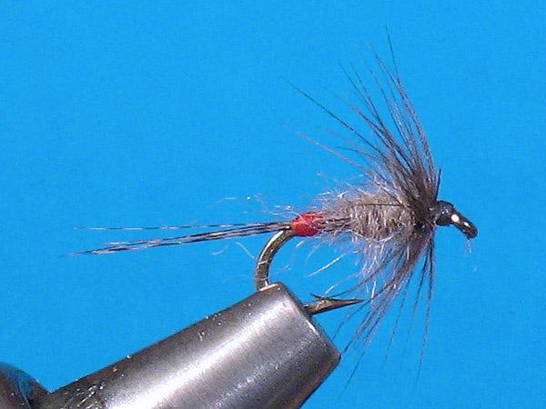 Marco reisen for Wet fly fishing
